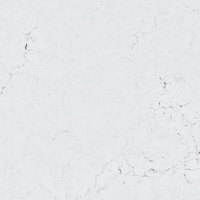 Bianco Venatino - White | Arizona Countertops