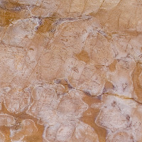 Desert Lagoon - Brown, White | Arizona Countertops