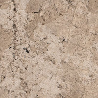 Frozen Black - Cream | Arizona Countertops