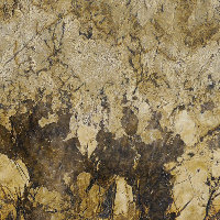 Juparana Persa Select - Brown, Gold | Arizona Countertops