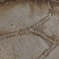Loggerhead - Brown | Arizona Countertops