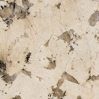 Madrigal - Multi-color | Arizona Countertops